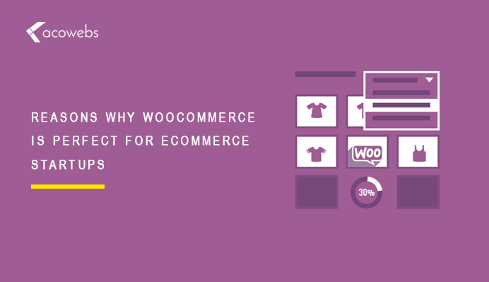 13 Reasons Why WooCommerce is Perfect for eCommerce Startups