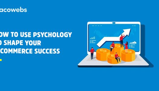 how-to-use-psychology-to-shape-your-e-commerce-success
